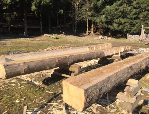 Der Transport eines Kantholzes für den Maueranker